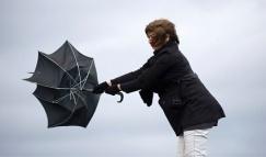 Сильные порывы ветра могут повредить каркас любого зонта